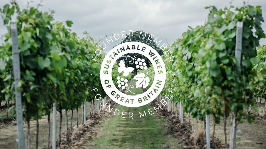 Gusbourne Sustainable Wines of Great Britain Founder Member